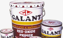 Chuyên sơn dầu galant sơn nước galant chính hãng