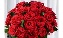 Tìm địa chỉ học cắm hoa nghệ thuật tại Hà Nội ?