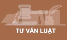 Dịch vụ Tư vấn Thành lập Doanh nghiệp miễn phí