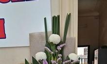 Tìm địa chỉ học cắm hoa nghệ thuật cấp tốc