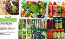 Cung cấp các mặt hàng nông sản sạch Đà Lạt