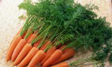 Nông trại rau sạch Đạ Nghịt cung cấp rau sạch