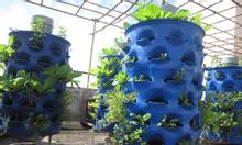 Bán tháp rau hữu cơ trồng cây, rau củ quả tại nhà.