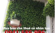 cỏ, cây, lá nhựa, dây leo trang trí spa, quán cafe