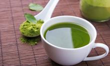 Matcha trà xanh Thái Nguyên
