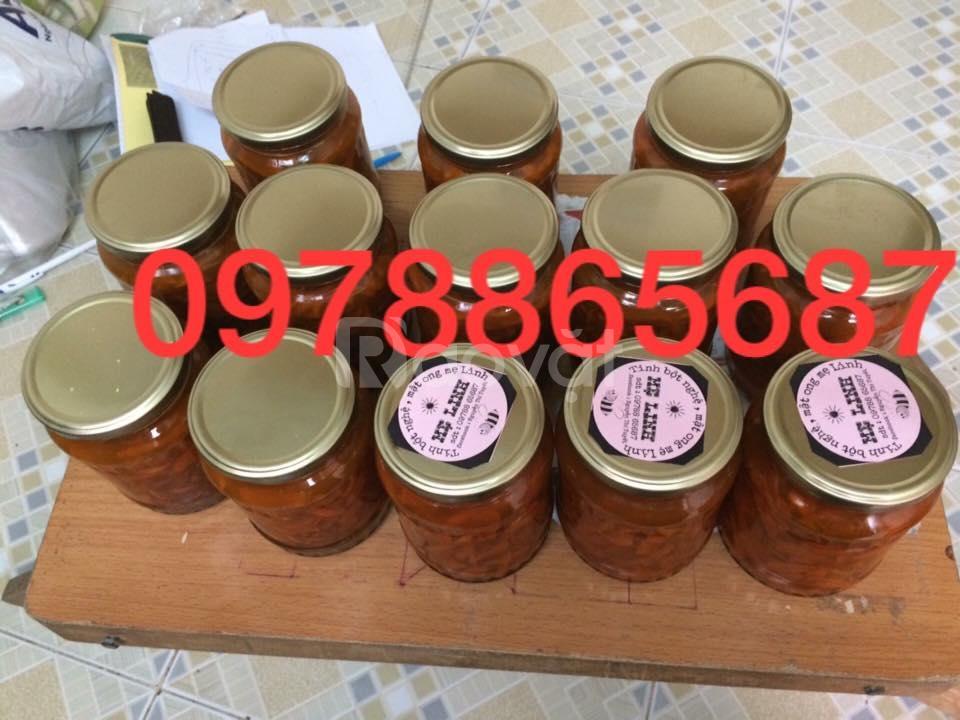 Bán tinh bột nghệ, mật ong Đaklak của nhà làm