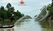 Nơi bán Cua cà ra sông  tươi sống tại Hà Nội