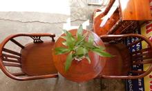 Bàn trà 2 ghế thiết kế nhỏ gọn tiện lợi
