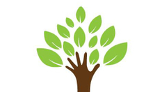 Chuyên cung cấp sỉ và lẻ cây kiểng nội ngoại nhập