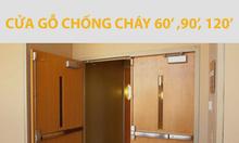 Cửa Chống Cháy TpHCM, Giá Cửa Chống Cháy 60,90,120