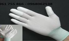 Găng tay phòng sạch phủ PU ngón,Bàn