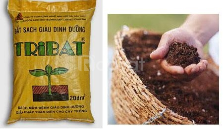 Đất trồng rau hữu cơ Tribat