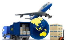 Đào tạo xuất nhập khẩu thực tế tại Hà Nội.