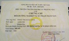 Cần học Nghiệp vụ sư phạm Mầm Non ở Bình Định