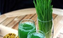 Tác dụng cỏ lúa mỳ