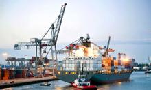 Đào tạo khai hải quan điện tử chuẩn VNACCS/VCIS