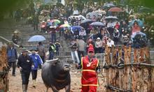 Cho thuê xe du lịch tham quan lễ hội Vĩnh Phúc