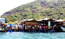 Tour đi bộ dưới biển Nha Trang-750K -0969550460