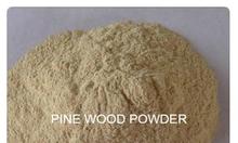Bột gỗ thông, keo, bạch đàn sản xuất nhựa gỗ