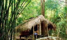 Cho thuê xe du lịch đi Tuyên Quang