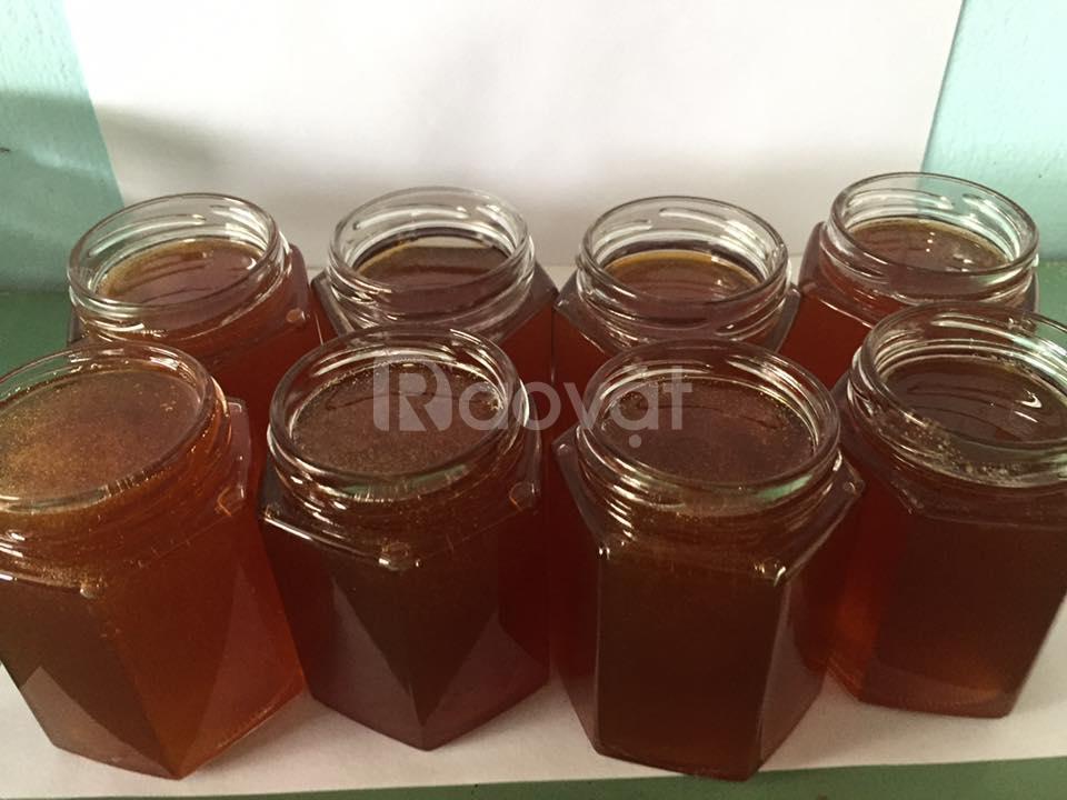 Mật ong ruồi nguyên chất - mật ong Lộc Yến