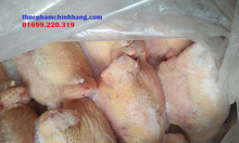 Đại lý phân phối gà đông lạnh tại Hà Nội
