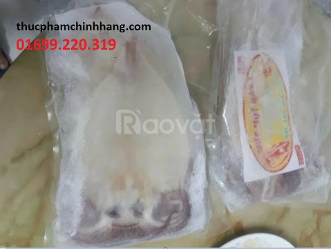 Đại lý cung cấp hải sản đông lạnh tại Hà Nội