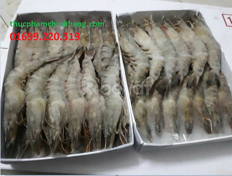 Đại lý phân phối hải sản đông lạnh tại Hà Nội
