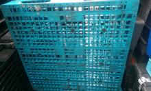 Pallet nhựa Đà Nẵng, pallet gỗ Đà Nẵng