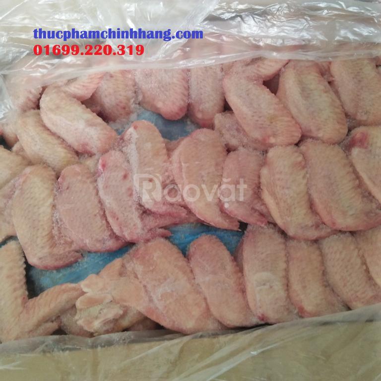 Đại lý cung cấp gà đông lạnh tại Hà Nội