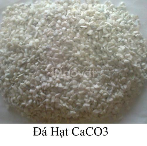 Bột đá CaCO3