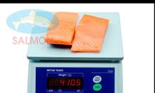Cân điện tử 10kg,20kg,30kg,60kg