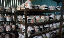 Mũ bảo hiểm Đà Nẵng, xưởng in mũ bảo hiểm Đà Nẵng