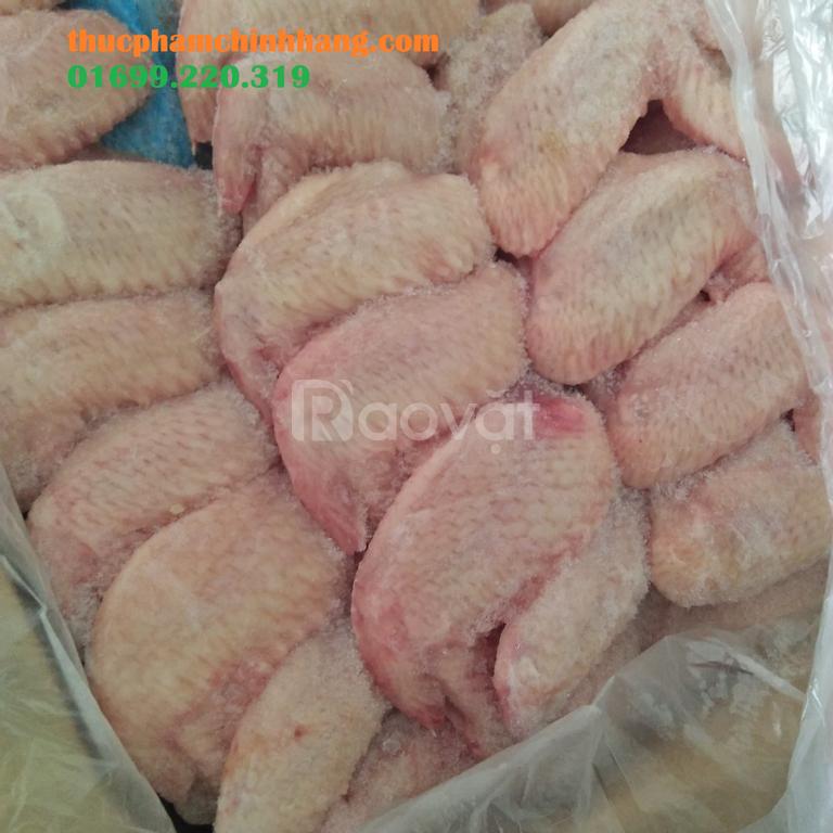 Cung cấp gà đông lạnh tại Hà Nội