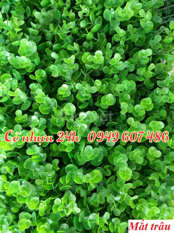 Tấm cỏ nhựa (miếng cỏ nhựa, vỉ cỏ nhựa) giá rẻ tại Hà Nội