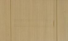 Cửa nhựa ABS Hàn Quốc giá sốc mùa xây chỉ có tại Vietducdoor