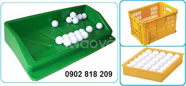 Khay đựng banh golf nhựa, khay golf nhựa, khay nhựa đựng bóng