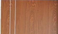 Cửa gỗ công nghệ cao cấp