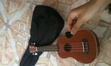 Đàn ukulele gỗ gụ