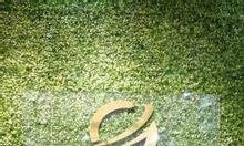 Tấm lá nhựa, tấm cây nhựa, tấm cỏ nhựa, miếng cỏ nhựa tại Quảng Ninh