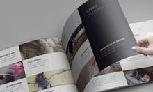 In catalog, hồ sơ đấu thầu, hồ sơ năng lực lấy liền nhanh rẻ đẹp