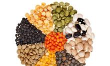 Chuyên Cung Cấp Các Loại Đậu Lăng Mỹ, Đậu Lăng Pháp Uy Tín, Chất lượng