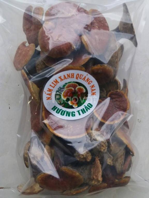 Hương Thảo: Phân phối sỉ và lẻ nấm lim xanh Quảng Nam giá cạnh tranh