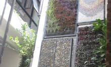 Thiết kế tường cây giá tốt Đà Nẵng