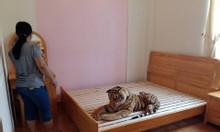 Giường ngủ đôi gỗ tự nhiên BLISS-1613w