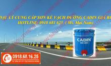 Nơi bán sơn kẻ vạch đường Cadin màu vàng giá rẻ Sài Gòn