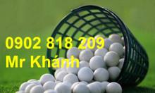 Combo 20 bóng golf (banh golf) nhập khẩu