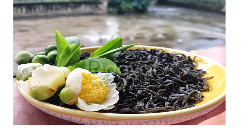 Trà Giác Quang (Trà Bát Tiên và Trà San Tuyết)