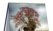 In lịch tết Tây Ninh