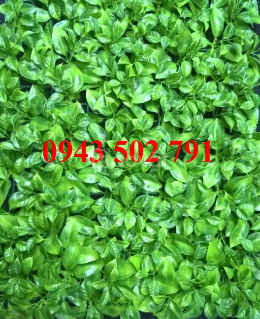Tấm cỏ nhựa trang trí biển hiệu quảng cáo tại Hà Nội